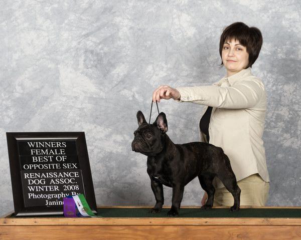 Dog Show In Chilliwack
