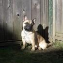 Tanzie 10 months