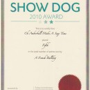 Borat's Top Dog Award 2010