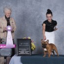 Anastasia and Bubba, Reserve Winners at Specialty