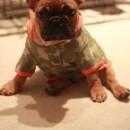 Bubba camo outfit