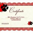 Tia's Certificate